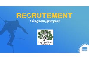 Offre d'emploi - L'arbre c'est la vie