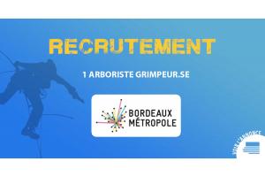 Bordeaux Métropole recrute un.e arboriste grimpeur.se