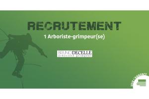 Offre d'emploi - Bruno Decelle