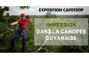 Exposition CAFOTROP
