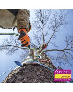 Formation au démontage et abattage pour arboristes et élagueurs. Hévéa Formation est certifiée Qualiopi.