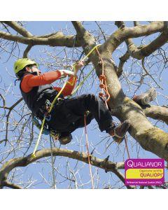 Formation de perfectionnement au déplacement SRT pour arboristes et élagueurs. Hévéa Formations est certifiée Qualiopi.