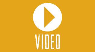 Vidéos dans l'univers de l'élagage